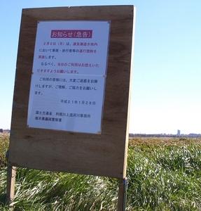 渡良瀬川3